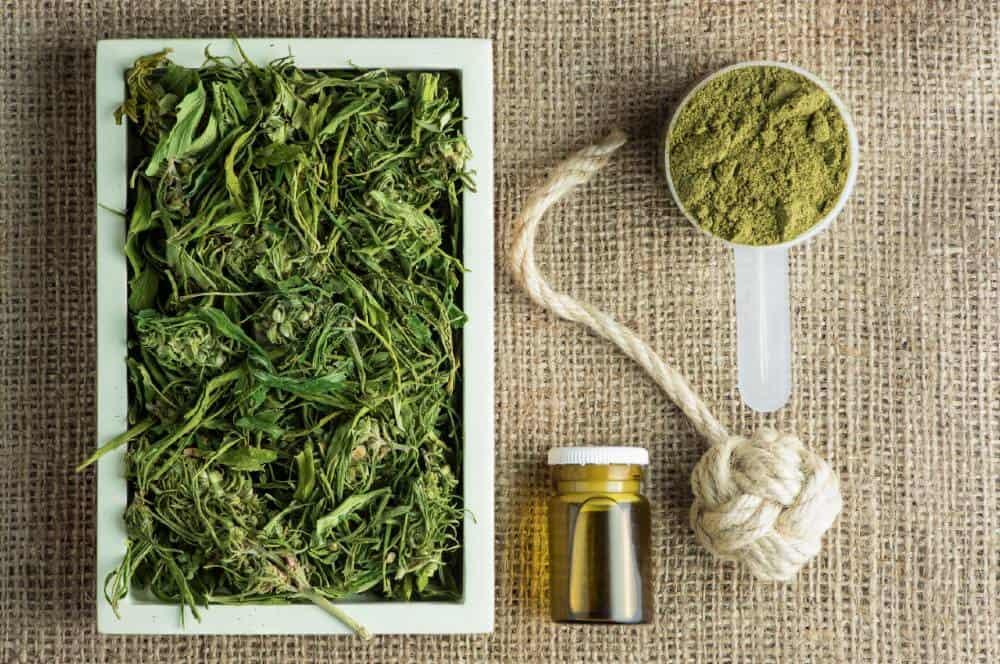 chanvre bio alimentation infusion thé