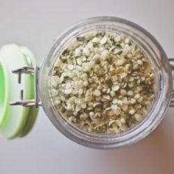 chenevis-graines-alimentaire-germination-cbd-chanvre-french-hemp-factory-2020