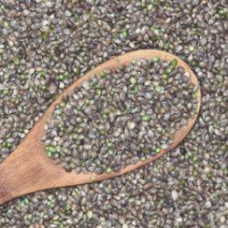 chenevis-graines-alimentation-cbd-chanvre-french-hemp-factory-2020