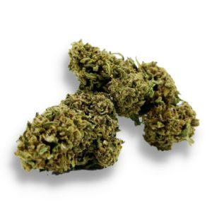 gorilla fleur de cbd