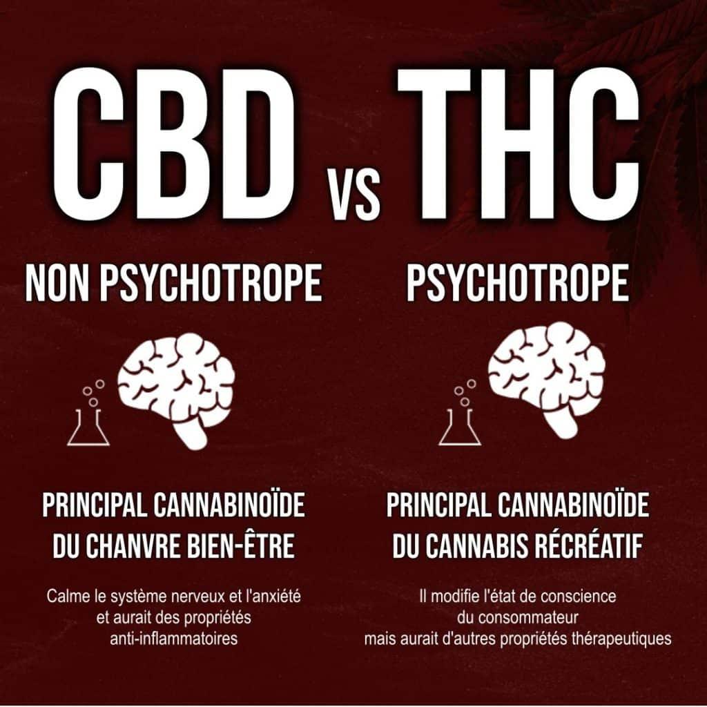 le CBD est différent du THC. Ce sont deux molécules différentes